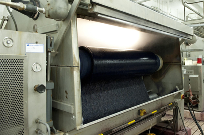 Raymakers dyeing machine velvet