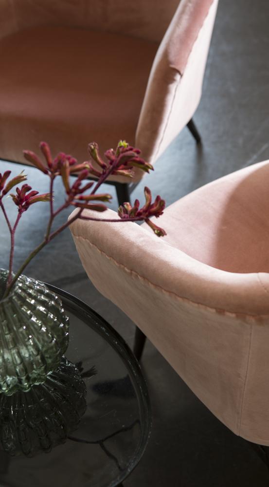 Raymakers upholstery velvet
